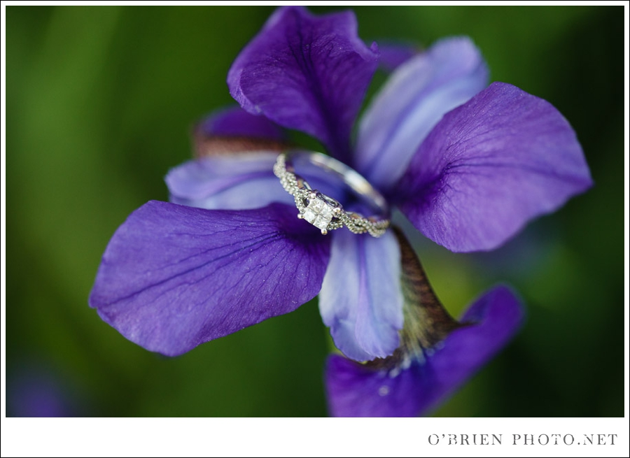 Heather & Justin: Engagement at Quonquont Farm